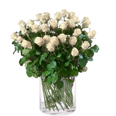 linderblumen_rosen_30stk