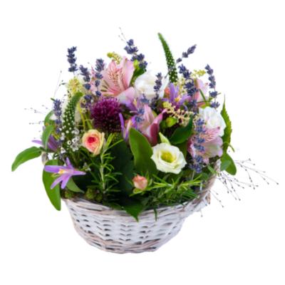Linder_Blumen_Sommergarten